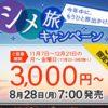 【スカイマーク】国内線7路線が対象のセールを実施!片道3000円~