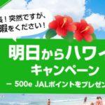 【JAL】ハワイ線を直前予約すると500e JALポイントがもらえるキャンペーンを延長決定