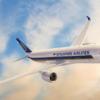 【改悪】シンガポール航空のマイルを使ってスターアライアンス特典に多くのマイルが必要になります