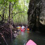 タイ | クラビ | アオナン | 【マングローブカヤック】 大自然を満喫できる絶景ツアー