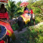 タイ | バンコク | オプショナルツアーの【パンダツアー】象乗り体験や首長族に会える施設【Chang Puak Camp】