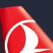 【トルコ航空】2人でヨーロッパまで往復100000円のキャンペーン実施中